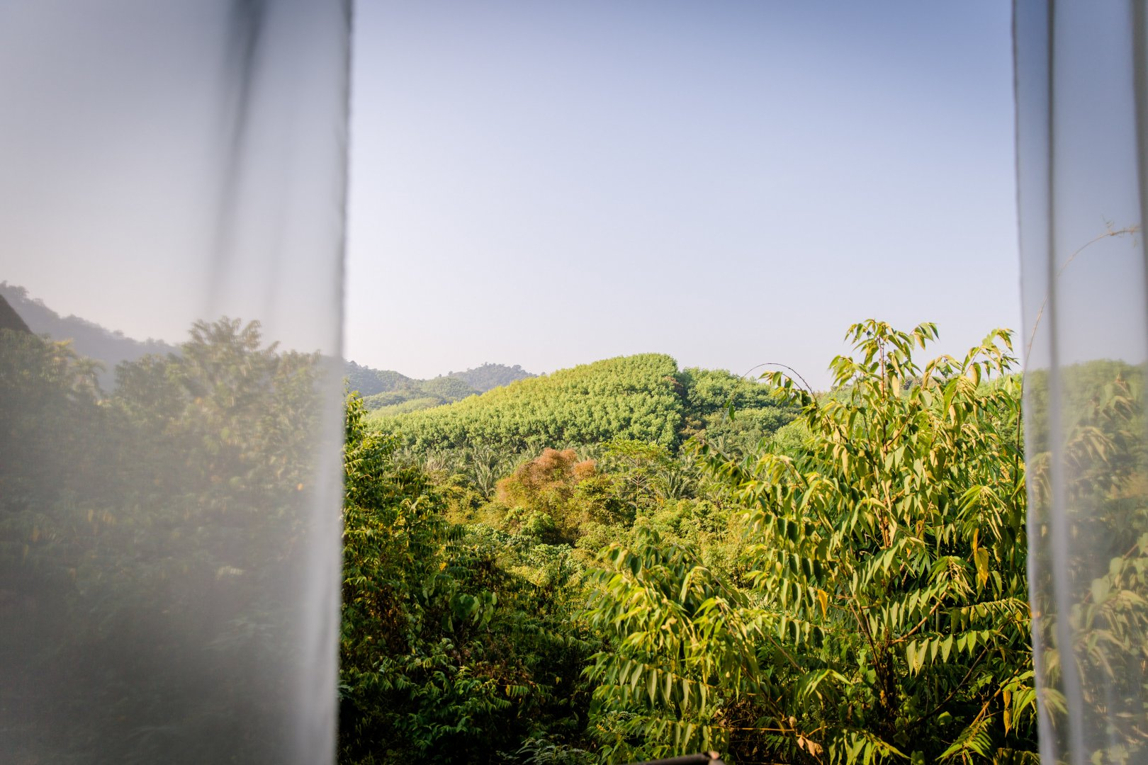 Vegetation Sky Green Natural environment Leaf Tree Window Forest Sunlight Mountain Hill station Plant Landscape Hill Cloud House Rainforest Glass Vacation Shrub