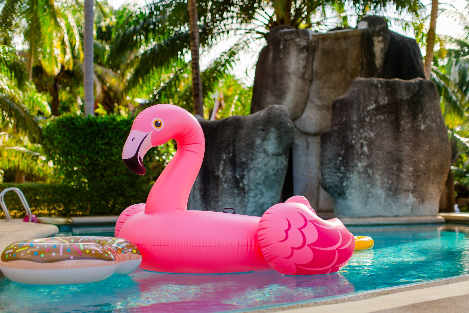 Flamingo Pink Water bird Swimming pool Bird Leisure Inflatable Fun Vacation Games Recreation Plant Water park