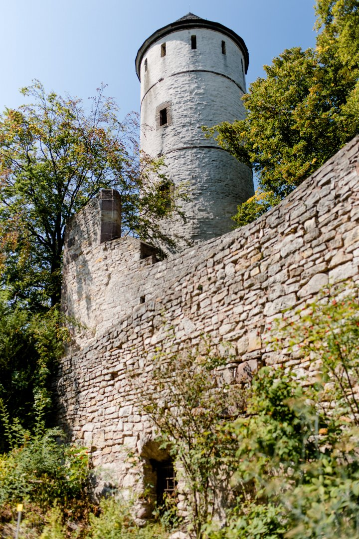 Wall Castle Fortification Building Architecture Tree Château Medieval architecture Turret Tower Middle ages History Plant Roof