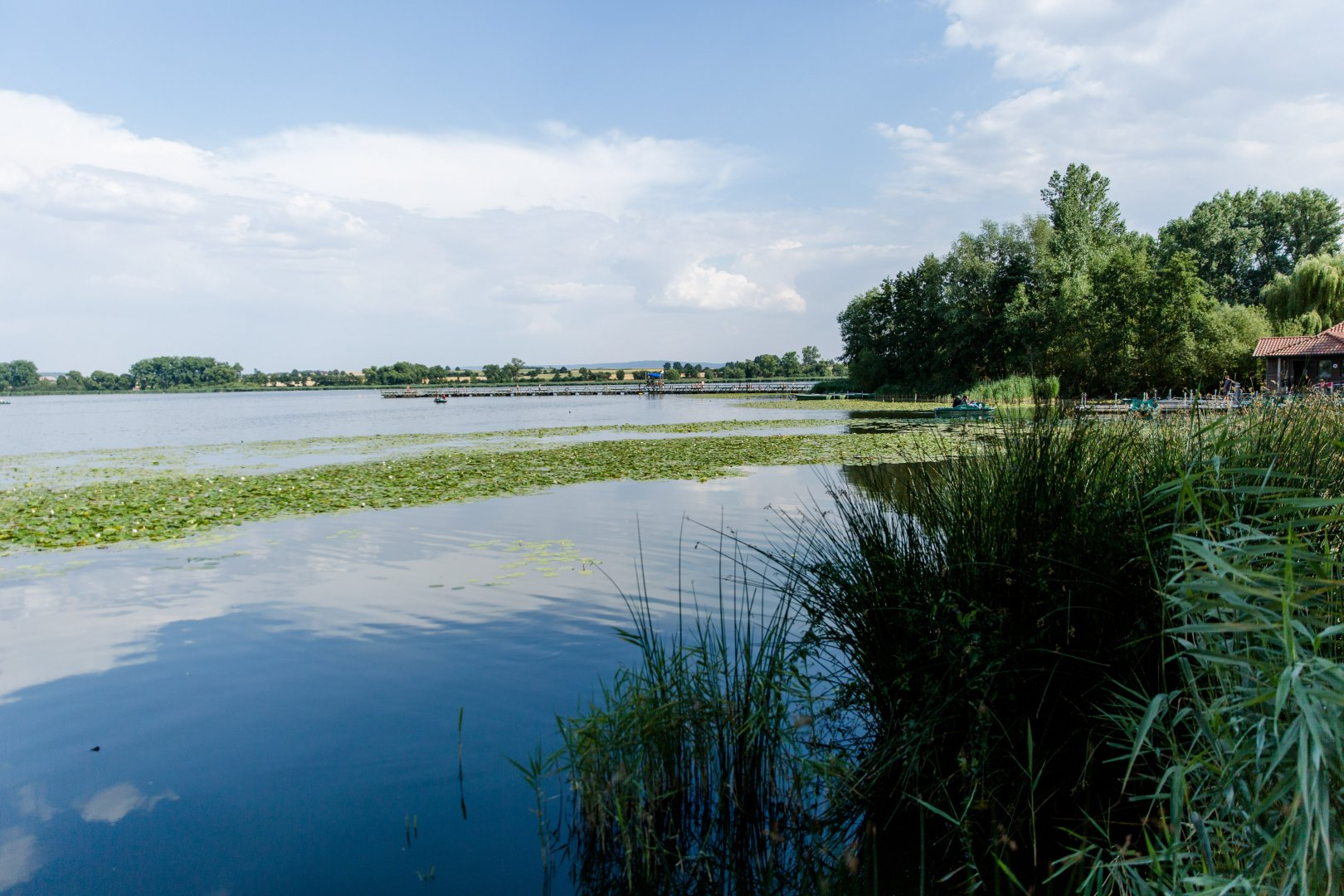 Body of water Natural landscape Water Nature Water resources River Sky Vegetation Natural environment Bank Green Nature reserve Lake Reflection Waterway Tree Floodplain Cloud Watercourse Grass family Grass Reservoir Marsh Sea Wetland Landscape Rural area Horizon Plant Pond