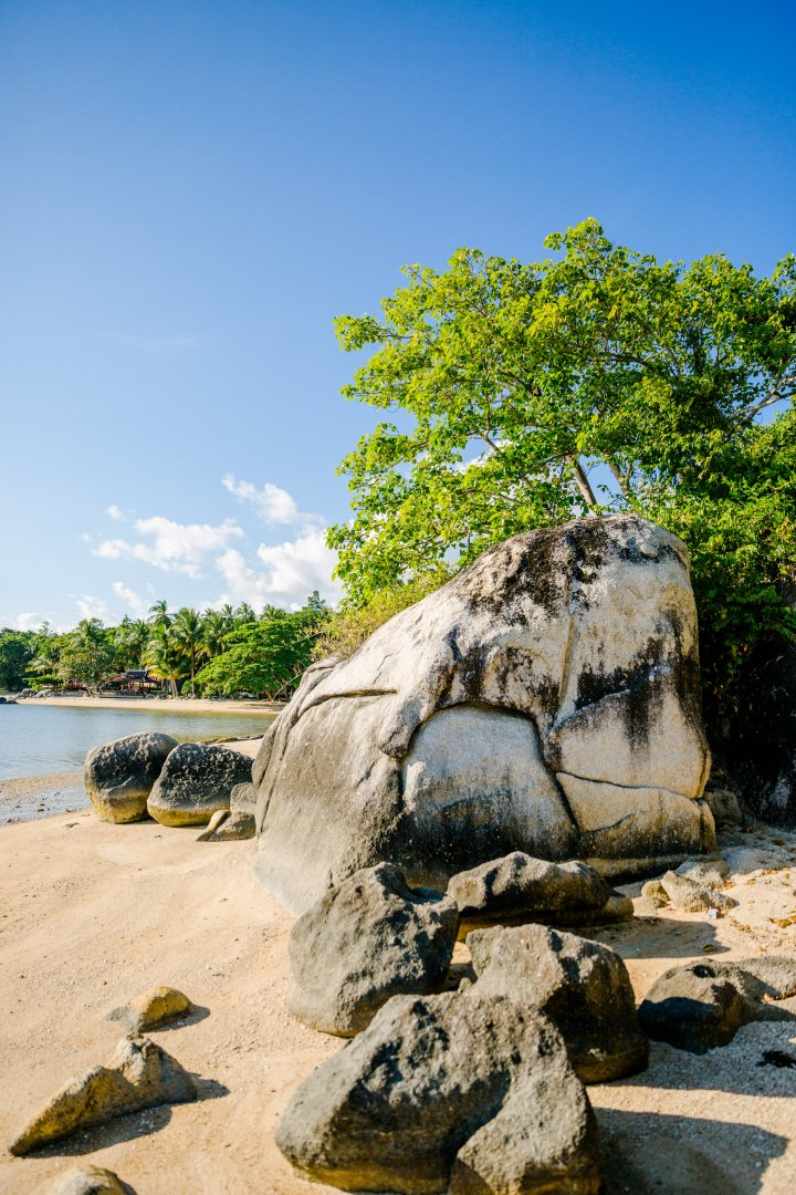 Rock Nature Sky Tree Water Beach Boulder Shore Sea Sand Tropics Outcrop Coast Woody plant Vacation Cloud Ocean Plant Formation Tourism Landscape Geology Bedrock National park Coastal and oceanic landforms State park Bay Watercourse Wood Mountain