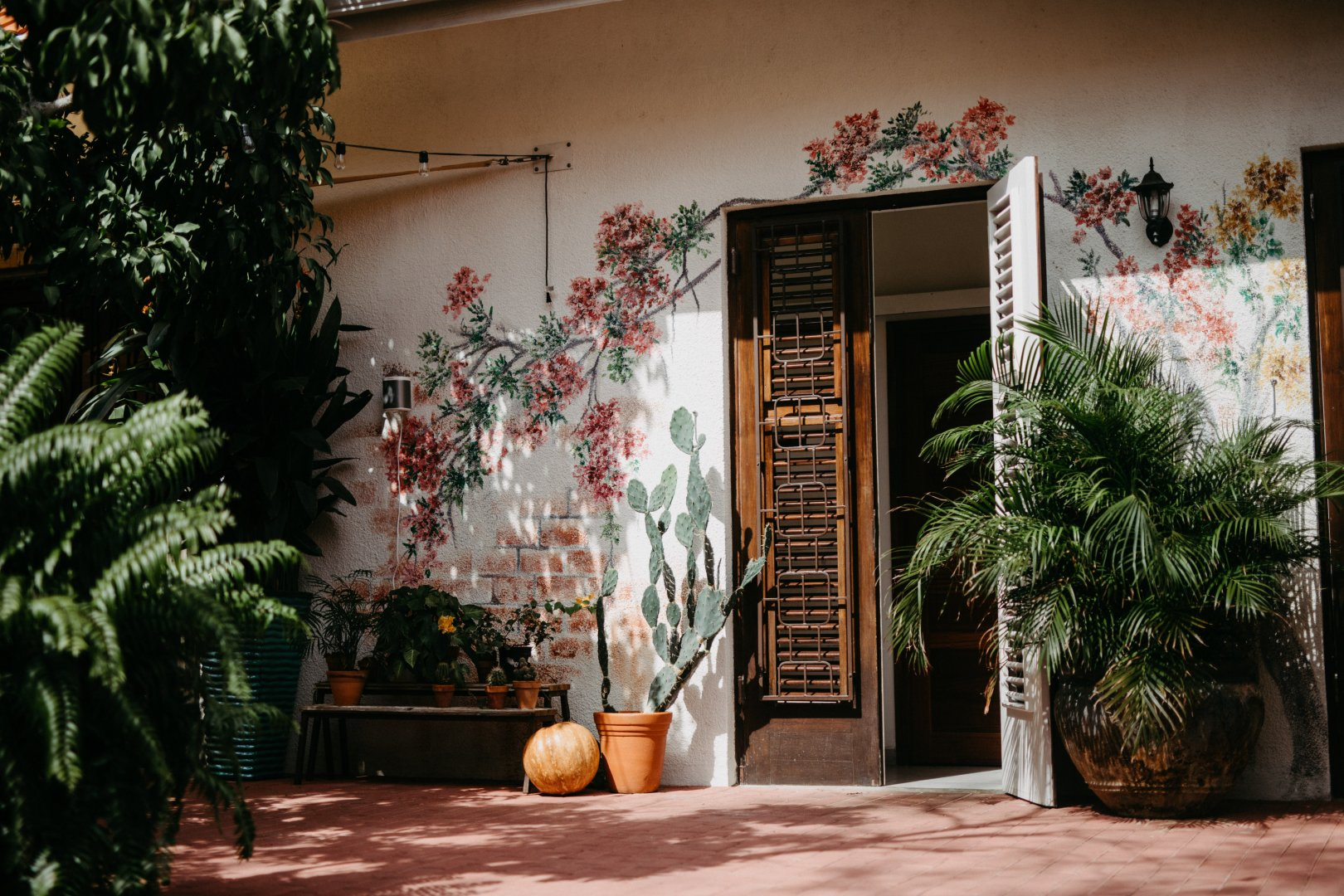 House Door Home Tree Building Architecture Houseplant Room Facade Plant Window Real estate Interior design Courtyard Flower