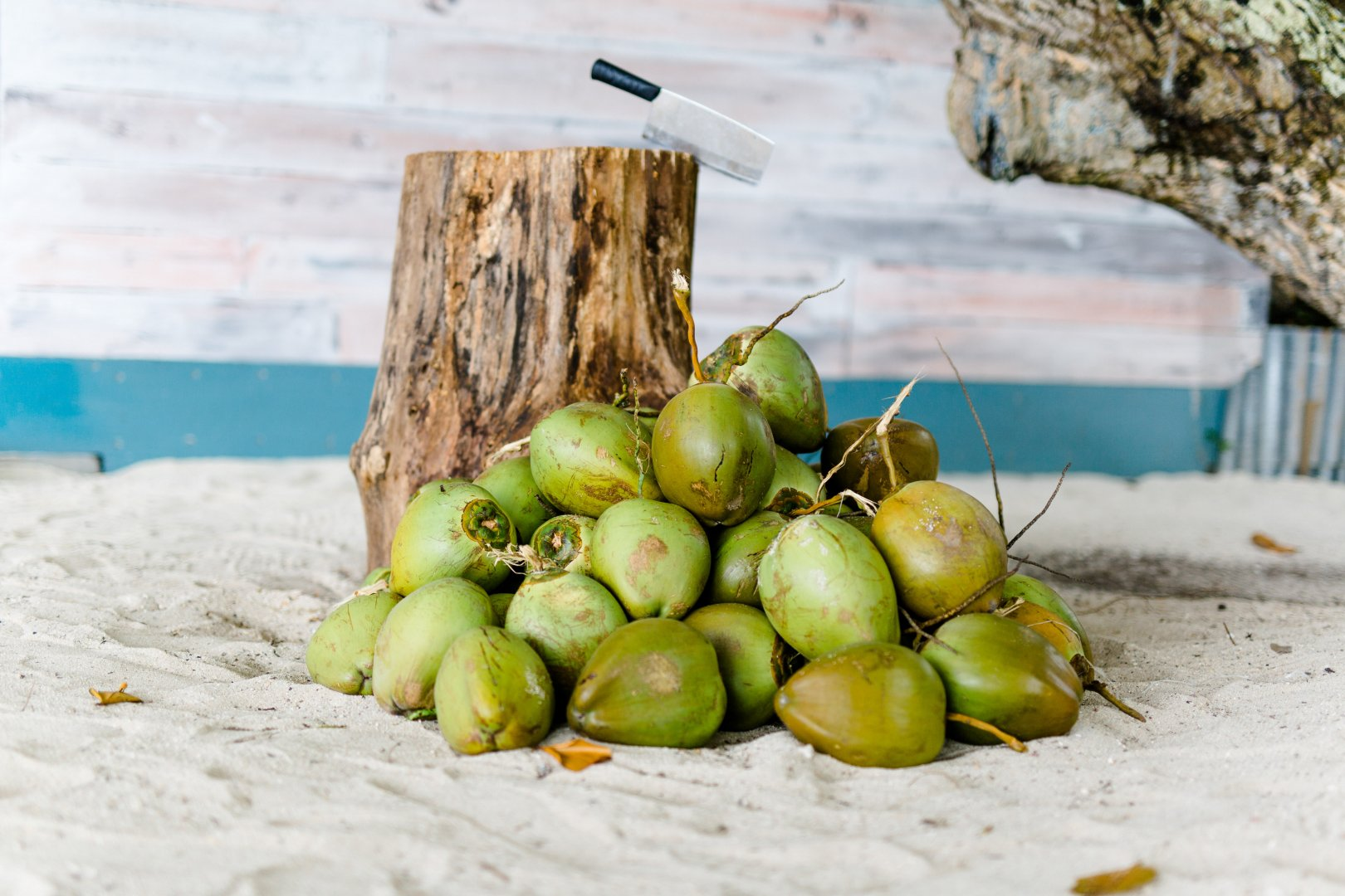 Natural foods Plant Coconut Food Local food Fruit Tomatillo Coconut water Produce Still life photography