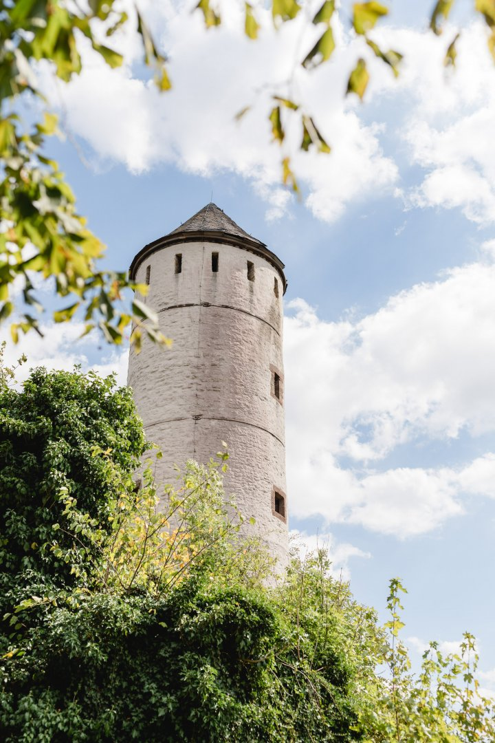 Sky Tree Leaf Castle Architecture Grass Tower Building Branch Plant Fortification Château Turret Medieval architecture Cloud History House Steeple Middle ages