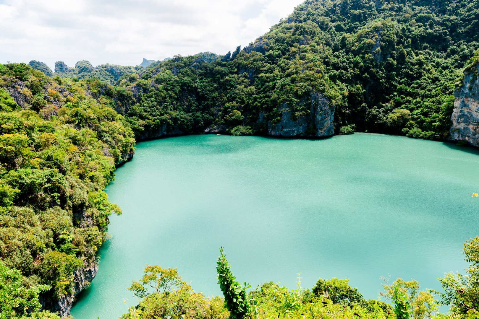 Body of water Nature Natural landscape Water resources Vegetation Water Green Nature reserve Reservoir Lake Biome Sky Lagoon Tree River Tropics Hill station National park Forest Landscape Jungle Bay Tourism Maar Watercourse Theatrical scenery Vacation Rainforest Plant State park