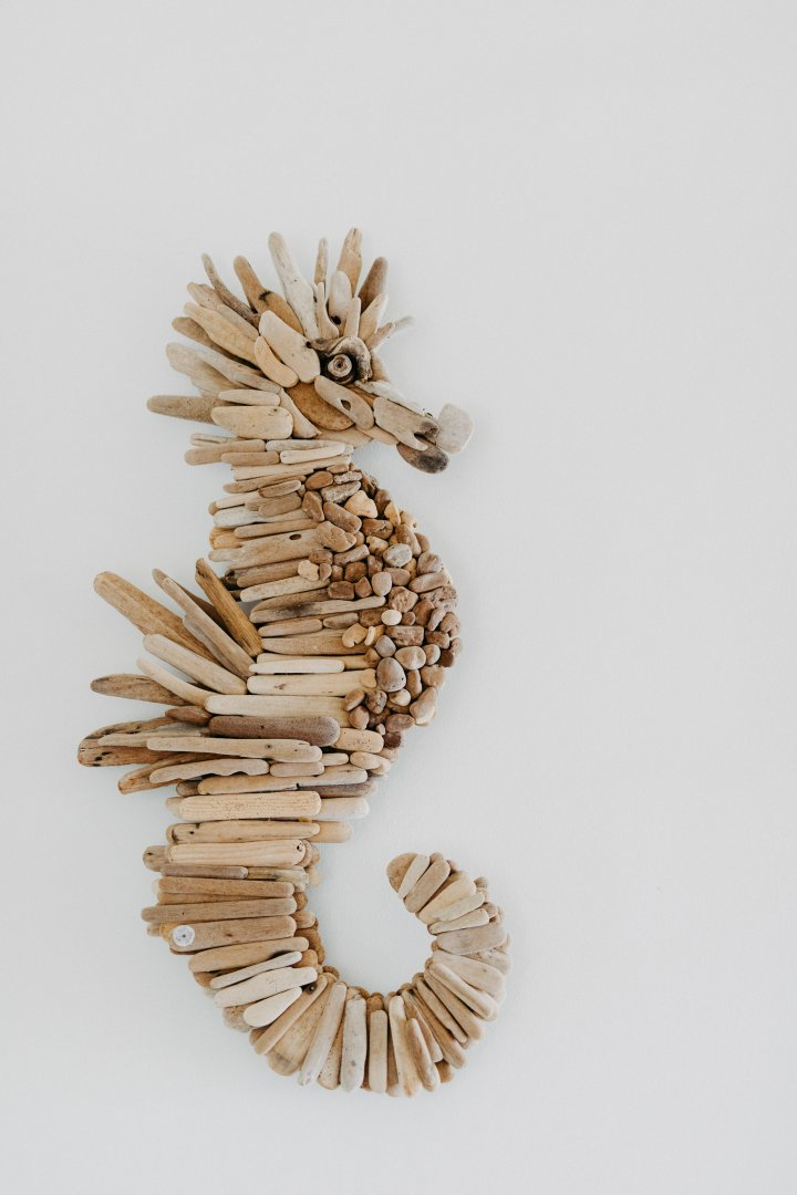 Seahorse Branch Sculpture Wood Twig Pine family Syngnathiformes
