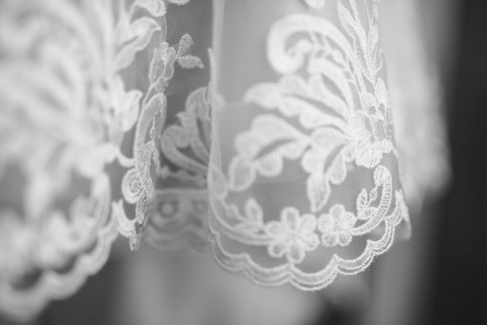 White Photograph Black-and-white Monochrome photography Monochrome Textile Dress Lace Lighting accessory Photography Lampshade Style Pattern Fashion accessory Still life photography Wildflower Wedding dress Doily Wedding