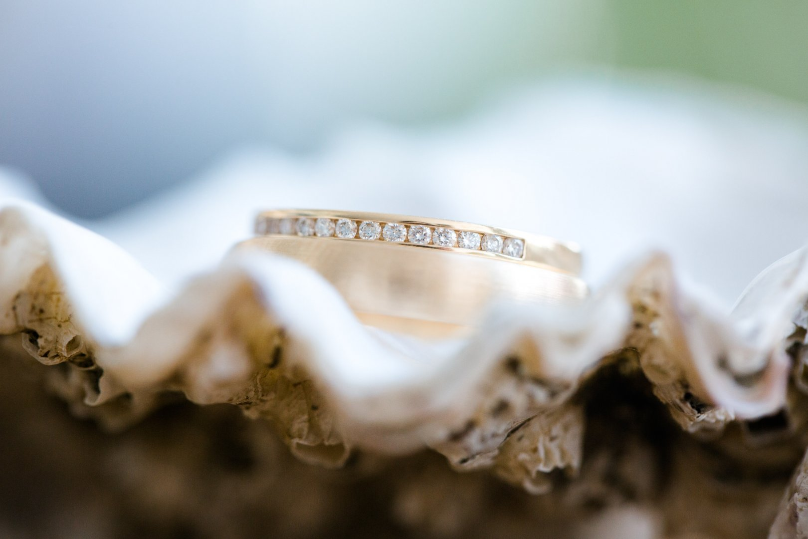 White Photograph Close-up Macro photography Font Photography Cloud Stock photography Jaw Fashion accessory Oyster Jewellery