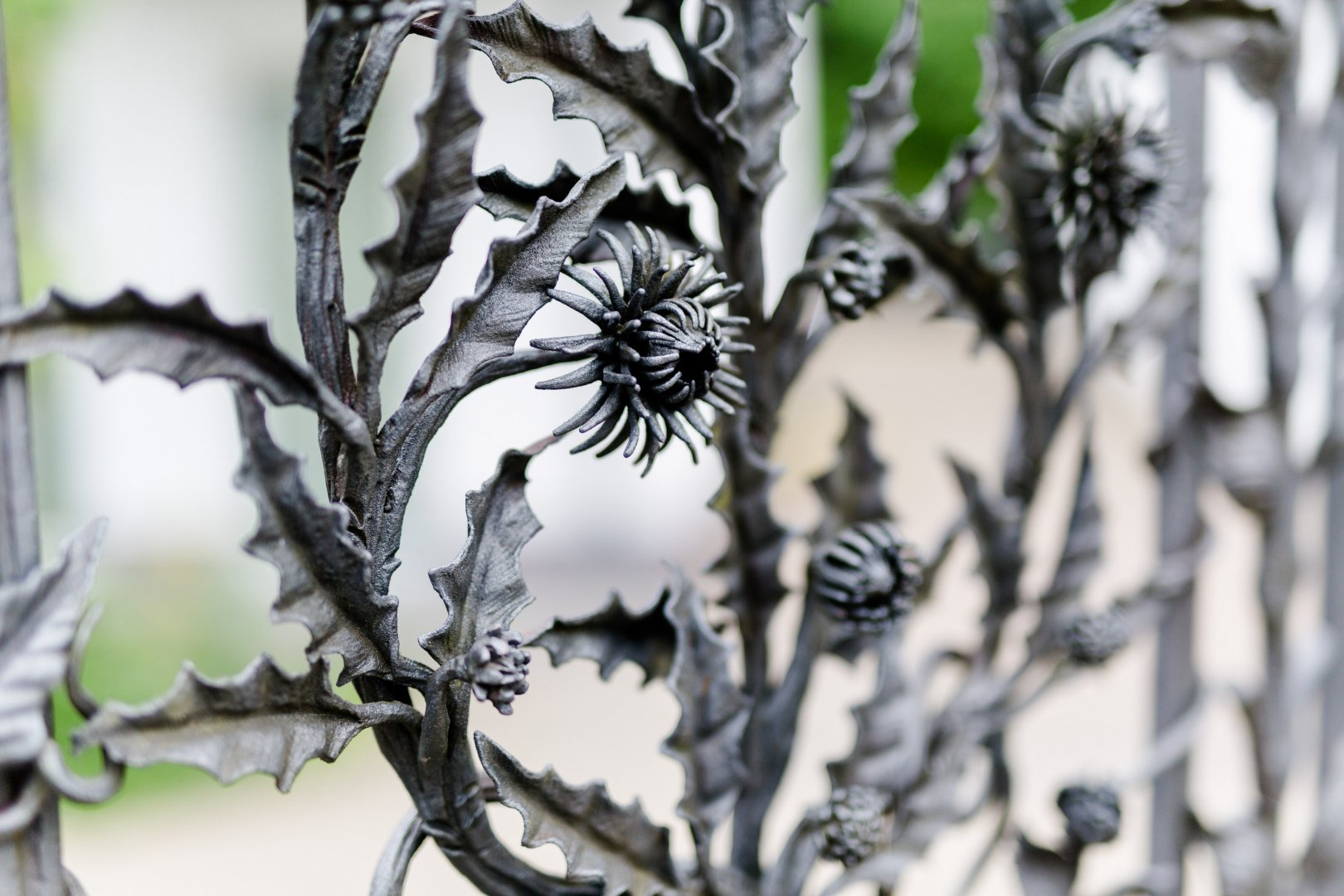 Black-and-white Leaf Botany Plant Branch Tree Flower Monochrome photography Plant stem Photography Metal Drawing Monochrome Wildflower Twig Perennial plant