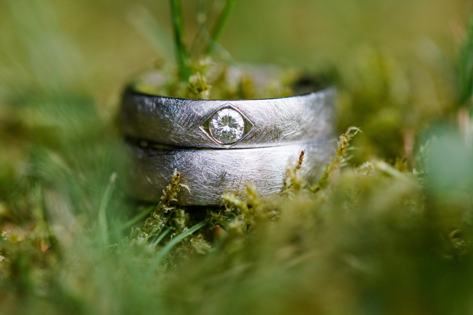Water Green Grass Wedding ceremony supply Wedding ring Macro photography Close-up Ring Photography Plant Engagement ring Fashion accessory Metal Snail